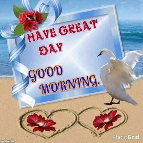Have A Great Day - Good Morning-wg16355