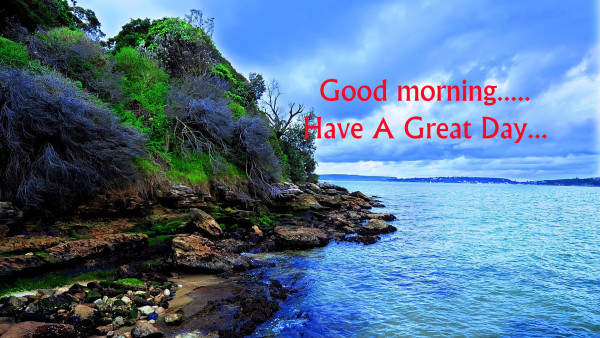 Have A Great Day - Morning !-wg16357