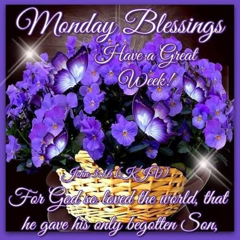 Image result for happy monday have a great week