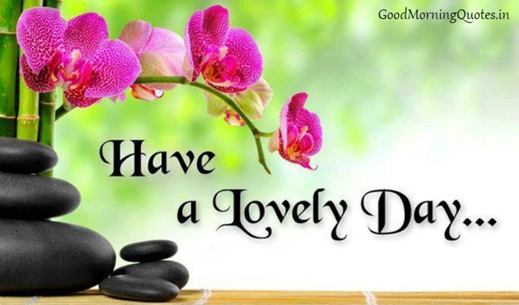 Have A Lovely Day To All