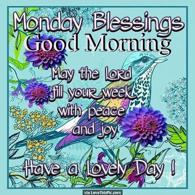 Good Morning Wishes On Monday Pictures Images Page 3