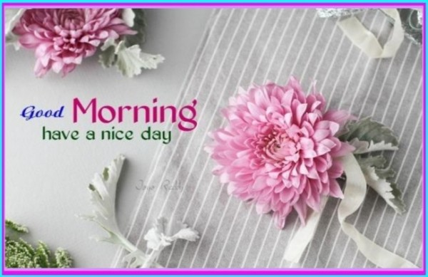 Have A Nice Day !!-wg16372