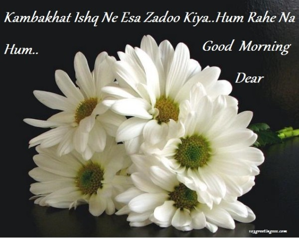 Hum Rahe Na Hum - Good Morning-wg16392