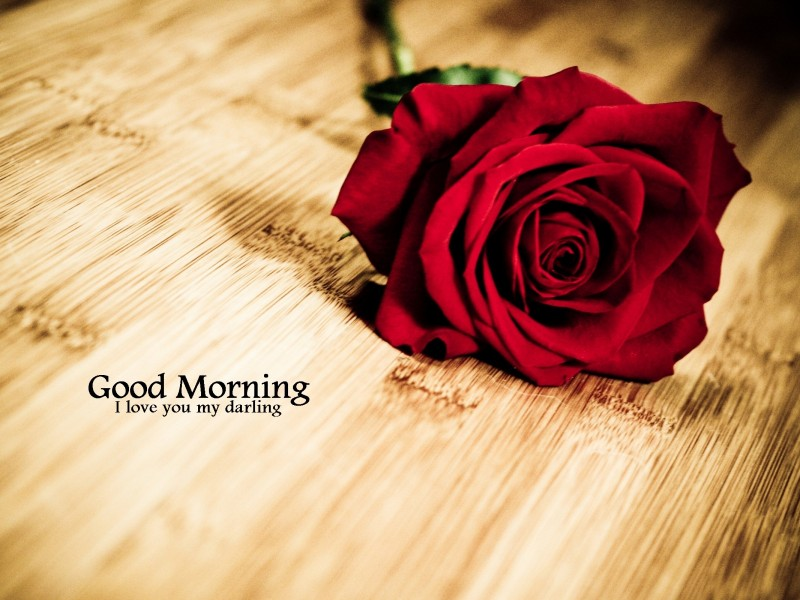 Good Morning My Love Wife Images : Good morning wishes for wife pictures images