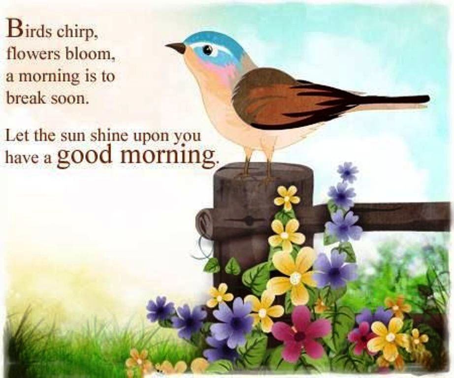 Let The Sunshine Upon You Have A Good Morning
