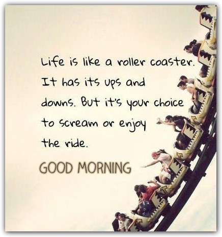 Life Is Like A Roller Coaster-wg16469