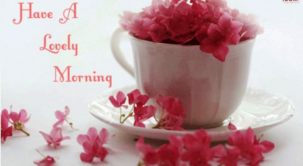 Good Morning Wishes With Flowers Pictures Images Page 27