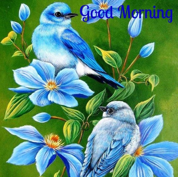 Morning - Blue Birds-wg16521