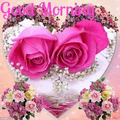 Morning Flowers-wg16565