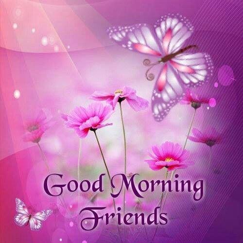 Morning Friends-wg16566