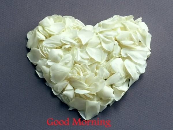 Morning - Heart-wg16537