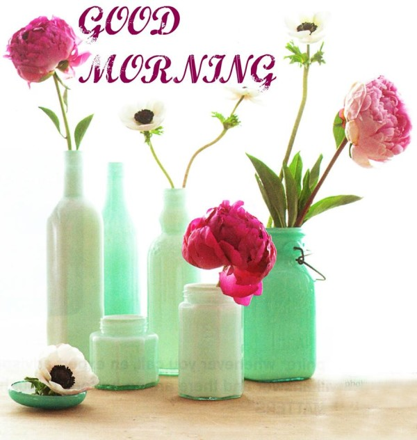Morning Image-wg16573