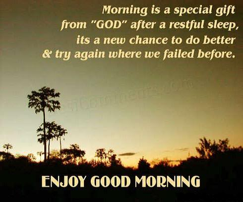 Morning is a special gift negle Choice Image