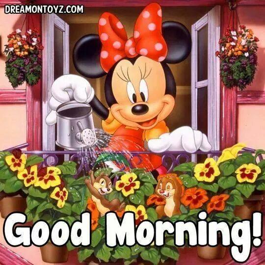 Morning Mickey-wg16580