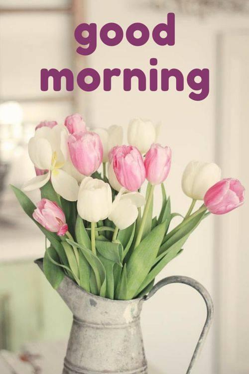 Morning Vase-wg16602