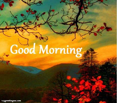 Morning View !-wg16603