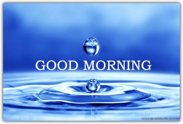 Morning Water Drop-wg16605