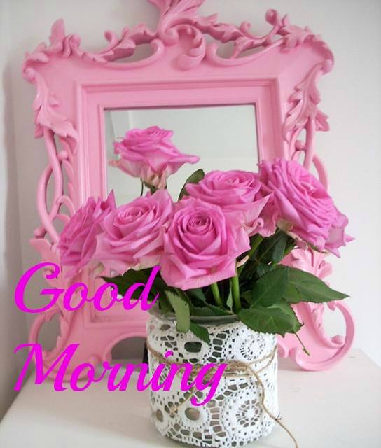 Morning With Pink Roses-wg16617
