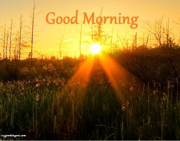 Morning With Sunrise-wg16619