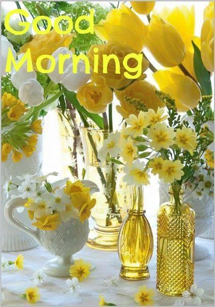 Morning Yellow Flowers