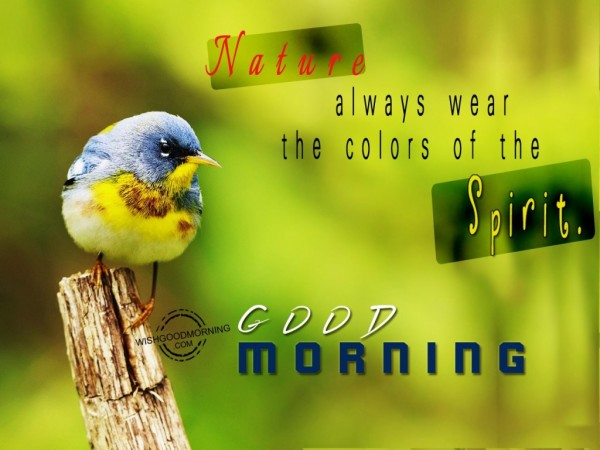 Nature Always Wear The Colors Of Life-wg16642