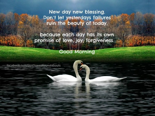 New Day New Blessing-wg16651