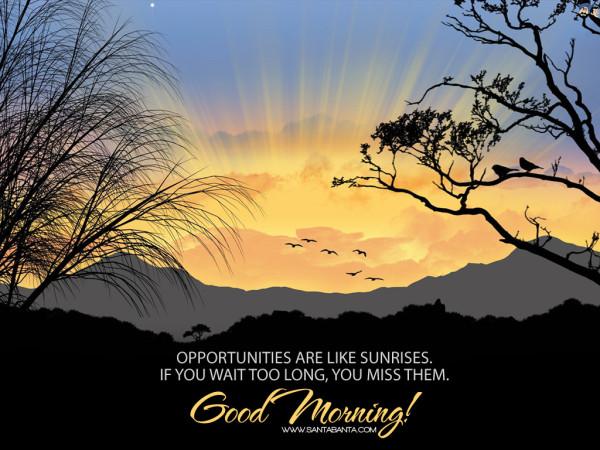 Opportunities Are Like Sunrises-wg16661