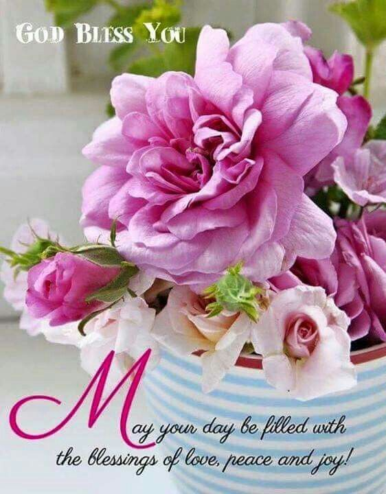 Good Morning Wishes With Flowers Pictures Images Page 33