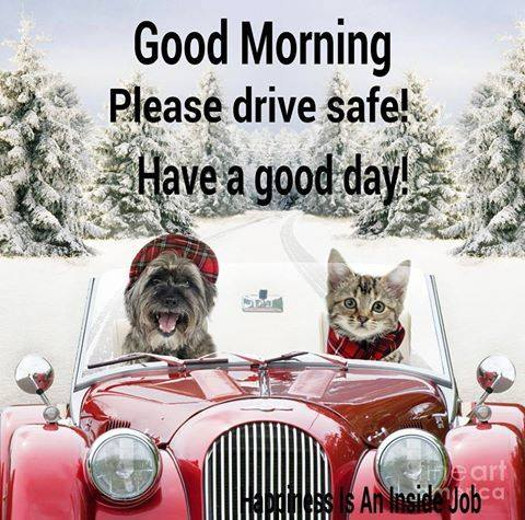 Please Drive Safe – Good Morning