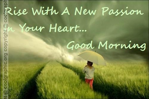 Rise With A New Passion-wg16672