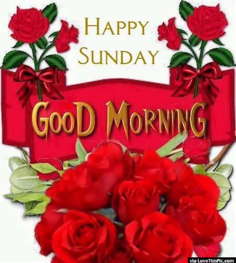 Good Morning Happy Sunday Free Download : Good morning happy sunday images hd download