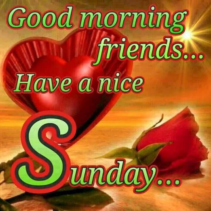 Good Morning Sunday Morning : Good morning wishes on sunday pictures images