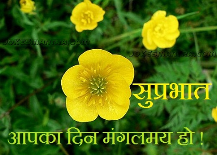 Good Morning Wishes In Hindi Pictures Images Page 10