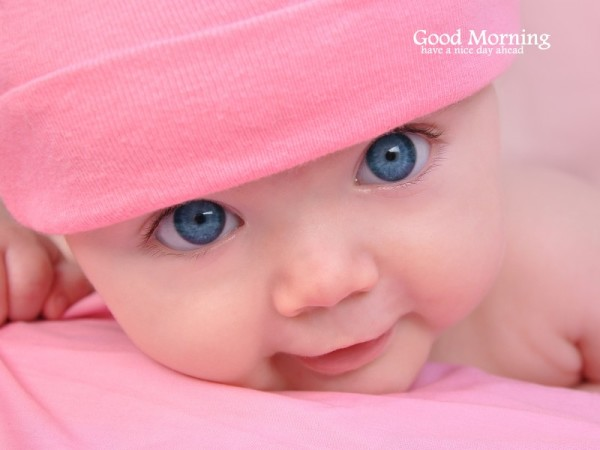 Sweet Baby - Morning-wg16721