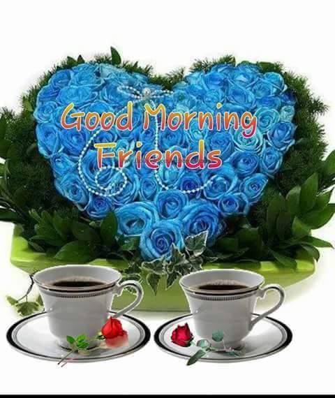 Sweet Friends - Good Morning-wg16724