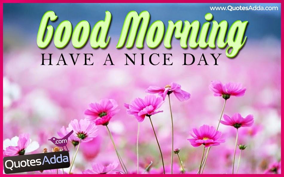 Good Morning Beautiful Spanish : Sweet morning flowers