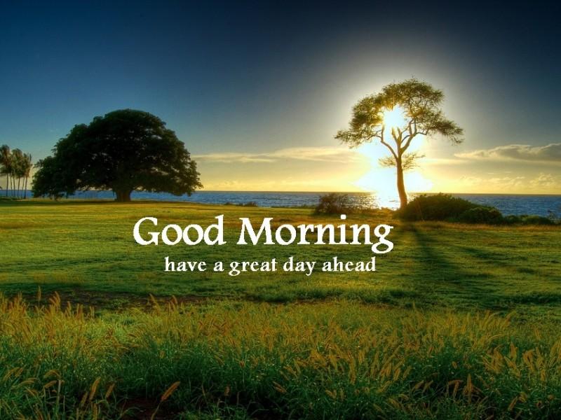 Good Morning Nature Image : Good morning nature kerala imgkid the image