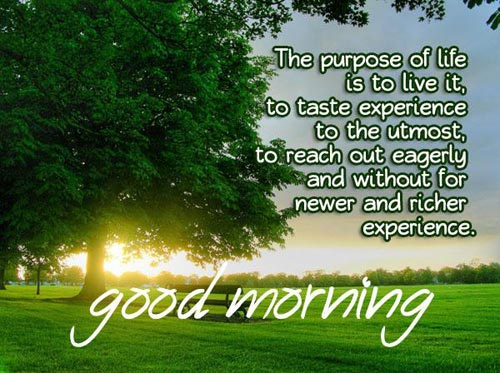 Image of: Inspirational Quotes The Purpose Of Life Is To Live Itwg140880 Good Morning Wishes Good Morning Quotes Pictures Images Page 32