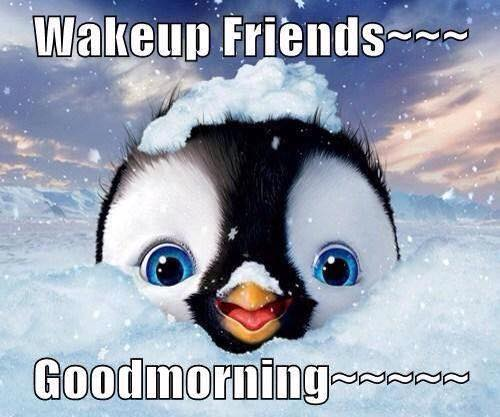 Wakup Friends - Morning-wg16777