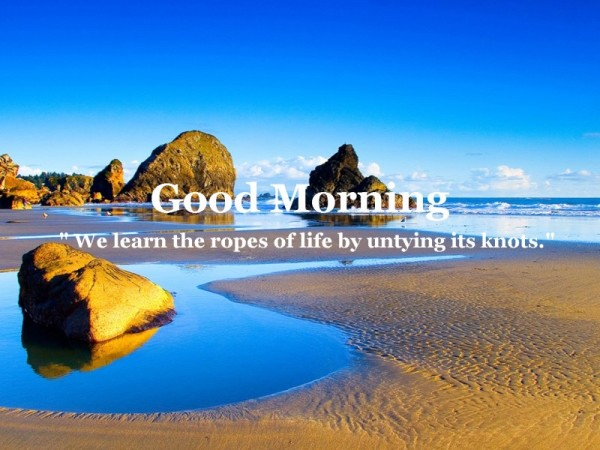 We Learn The Ropes - Good Morning-wg16784