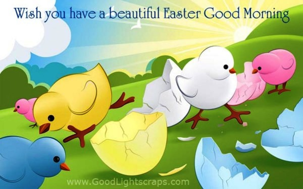 Wish You Have A Beautiful Easter -  Good Morning-wg023456