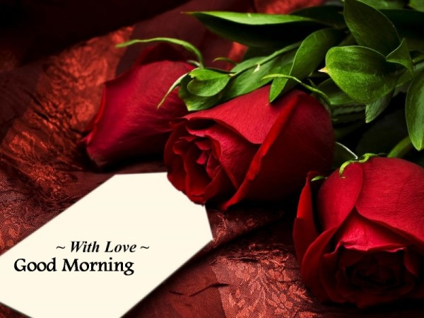 With Love Good Morning !-wg16805