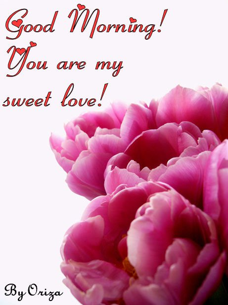 You Are My Sweet Love-wg16821