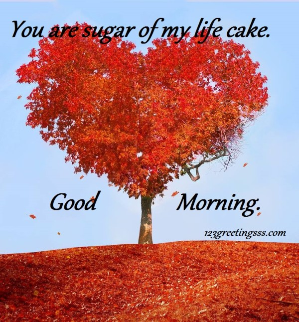 You Are Sugar Of My Life - Good Morning-wg16827