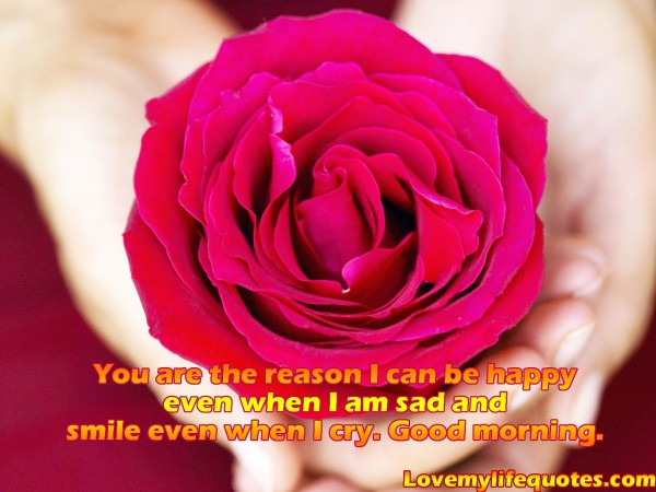 You Are The Reason I Can Be Happy !-wg16833