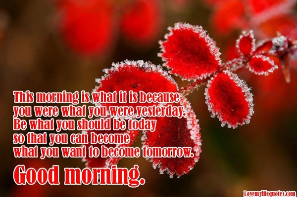 You Can Become - Good Morning-wg16838