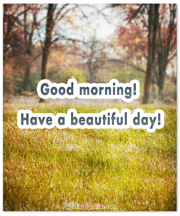 Have A Beautiful Day - Good Morning !-wg16337